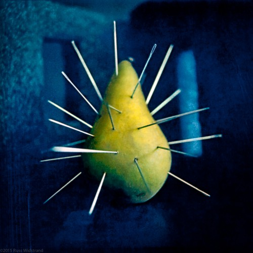One pear is pierced by pins as a metaphor for the pain of the human experience. Shot on Polaroid film.